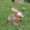 Заек клекнал
