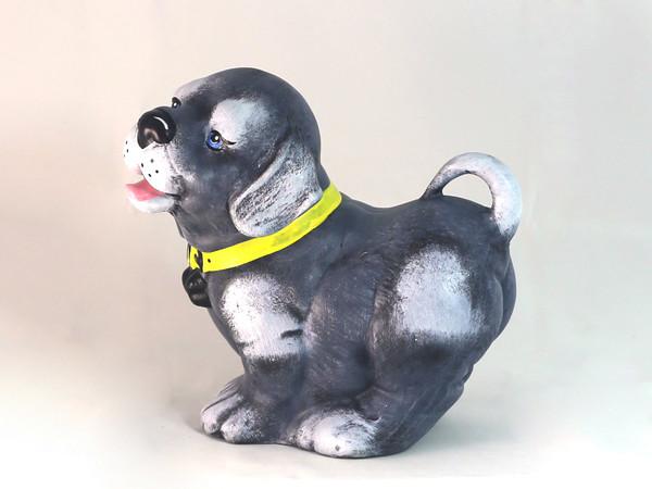 Куче с каишка каса